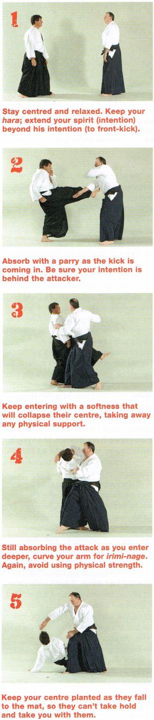 No-Bull Aikido pic6
